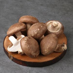 100% 국산 유기농 표고버섯 1kg(가정용)