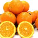 고당도 오렌지 블랙라벨 대과 3kg내외(12과내외)