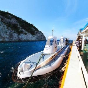 제주 서귀포잠수함+카멜리아힐|제주여행|동백꽃수목원