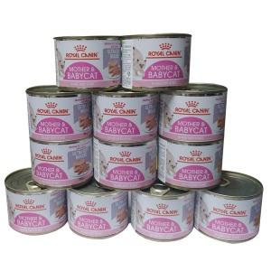 로얄캐닌 베이비캣 캔 195g 12개  고양이습식사료