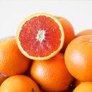 썬키스트 카라카라 오렌지 88과 24개입 개당 190g 내외