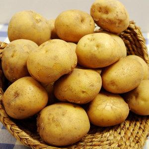 국내산 감자 감자 10kg (중) /국내산