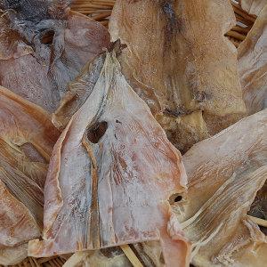 건오징어 반건조오징어 10종/피데기 파품 1kg 20900원
