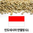 그린빈 커피 생두 인도네시아 만델링 G1 1kgX3개