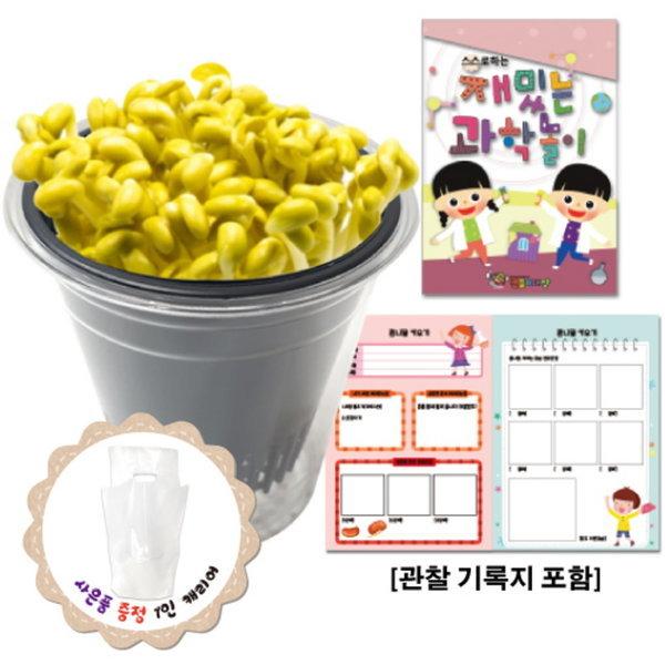 만들기대장-콩나물 키우기(관찰기록지포함) (만들기대