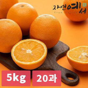 자연예서  고당도 오렌지 5kg(20과) 미국 수입산