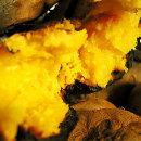 고구마 늘찬 호박고구마 못난이10kg 크기램덤