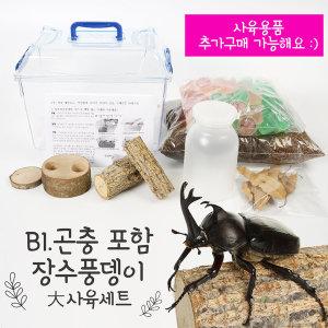 장수풍뎅이 곤충포함 국산 클린 대형 사육세트 B1