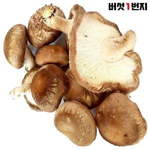 표고1번지 장흥 무농약 못난이 표고버섯 1.5kg
