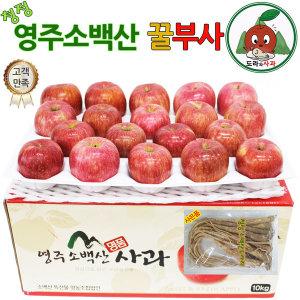 청정 영주소백산사과 가정용꿀부사10kg중대과(32~36과)