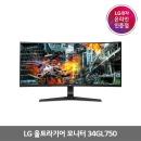 LG전자 울트라기어 34GL750 게이밍(4월24일 예약판매)