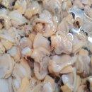남해안 해감 생물 깐 바지락살 1kg /당일작업/당일발송