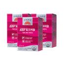 고려은단 퓨어 밀크씨슬 60캡슐 3박스(6개월분)