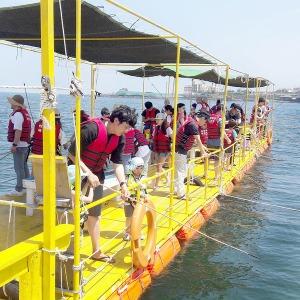 제주 제주체험마을 제주전통바다체험|제주여행|낚시