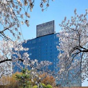 서울 용산구|그랜드 하얏트 서울