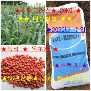 매장/정품/수단그라스20kg/호밀20kg/녹비/목초용/만생