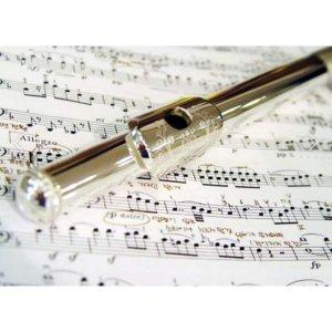 악기대여 연습용 동아리용 플룻대여  보증금없음