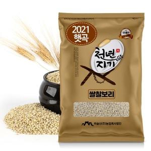 천년지기 찰보리쌀 5kg 쌀찰보리쌀 찹쌀보리 2021년산