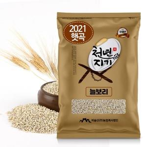 천년지기 겉보리쌀5kg 늘보리쌀 늘보리 2021년 햇보리