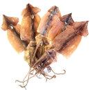오징어 마른오징어 건오징어 5마리 약200g 국내산 동해