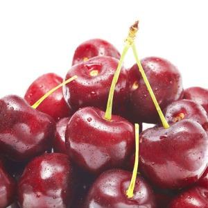 후레쉬 생체리 2kg 특대 9.5R /크고 맛있는과일