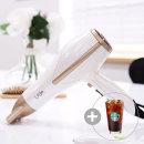 라샤 초경량 전문가용헤어드라이기 LS2201D + 커피증정