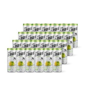 프로틴 스파클링 단백질 음료 WPI 헬스 보충제 24개입