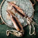 태안 자연산 손질오징어 (왕특대) 1미 x5팩 /총 1.25kg