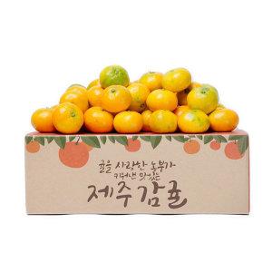 제주 감귤 햇감귤 4.5kg(실중량) 로열과(21년수확)S-M