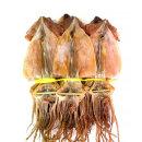오징어 마른오징어 건오징어 20마리(약0.8kg) 동해안發
