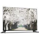 139cm 4K HDR UHD TV WT550UHD 스탠드설치 55인치TV