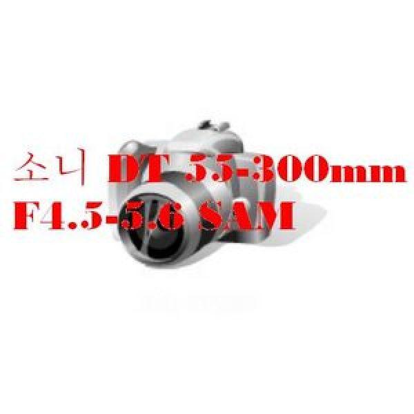소니 DT 55-300mm F4.5-5.6 SAM