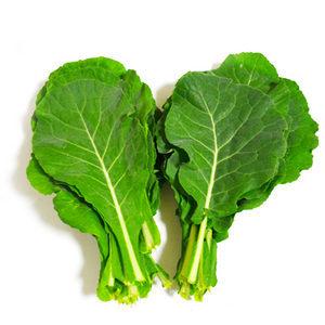 유기농 케일 1kg /쌈채소/쌈케일