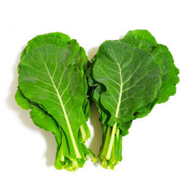 유기농 케일 1kg /당일수확/농가배송/쌈케일