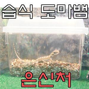 파충류 습식 은신처 L-도마뱀/소형/장식/수족관/숨기/일광욕/용품 ...