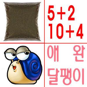 애완 달팽이 집 사육통 사료 흙 톱밥 매트 먹이