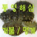통영 자연산 해삼1kg/개불7미/건해삼/멍게/무료배송