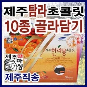제주 탐라초콜릿(대형 중형소형) 한라봉 감귤초콜렛