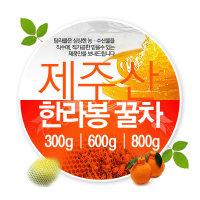 제주도 꿀차/한라봉/오미자/선인장/제주벌꿀