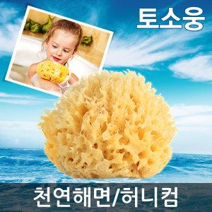 천연해면/허니컴/파인실크/해면스펀지/그리스