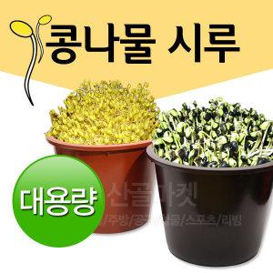 콩나물시루/미나리 재배기/서리태/콩나물/숙주나물
