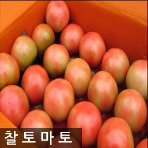 명품 완숙 토마토 5kg 특가찬스