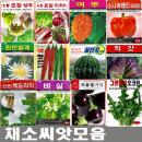 채소씨앗.허브.꽃씨앗.새싹씨앗.민속씨앗.퇴비.