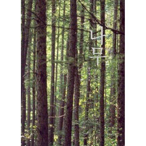 나무(애장본)