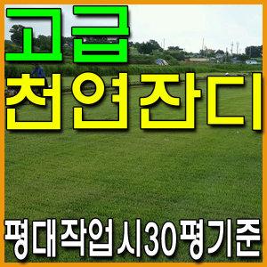 한국잔디/3000장/18cmx18cm/꽉채움30평기준/무료배송