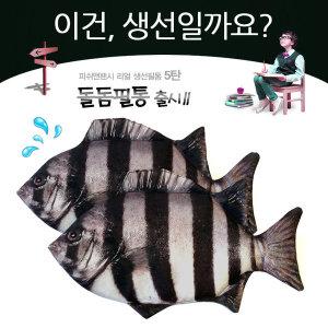 피쉬앤팬시 히트 생선 필통 돌돔필통/파우치