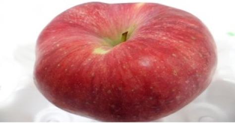 빨간사과 홍로 첫수확기념9~10kg 8900원