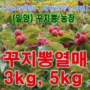 2018년 햇열매/무농약인증-꾸지뽕열매