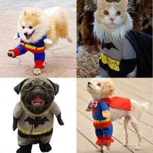 코스프레애견의류.강아지슈퍼맨옷.배트맨옷.강아지옷