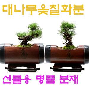 특별한명품 고급분재 꽃배달 개업선물 화분 감동선물